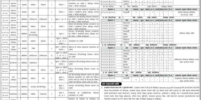 Nepal Electricity Authority Vacancy Government Job